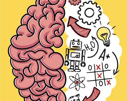 Brain Test Cevapları